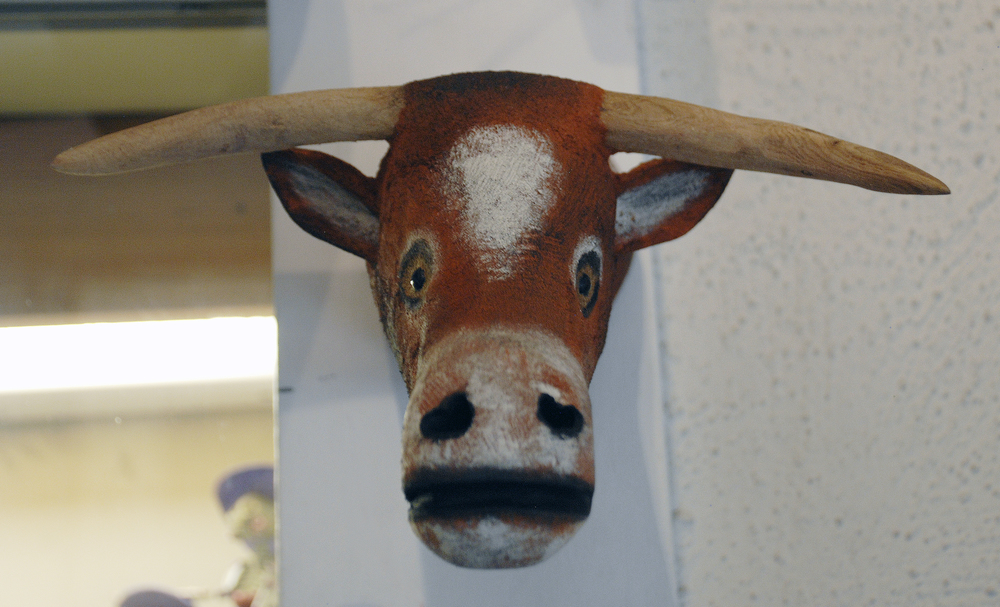 Long Horn Head.jpg