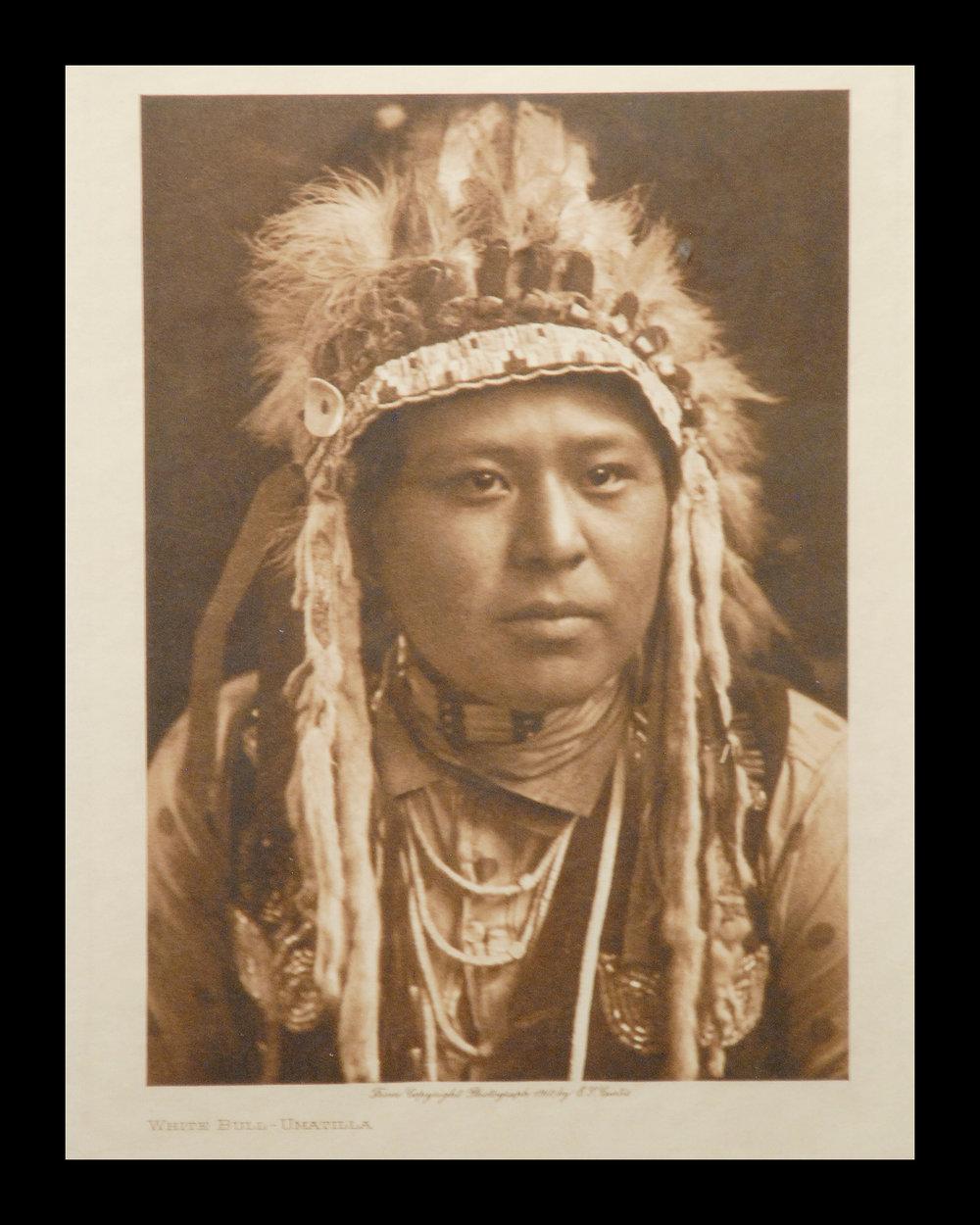 """""""White Bull-Umatilla"""" 1910 Vol.8          Vellum Print,Vintage Photogravure"""