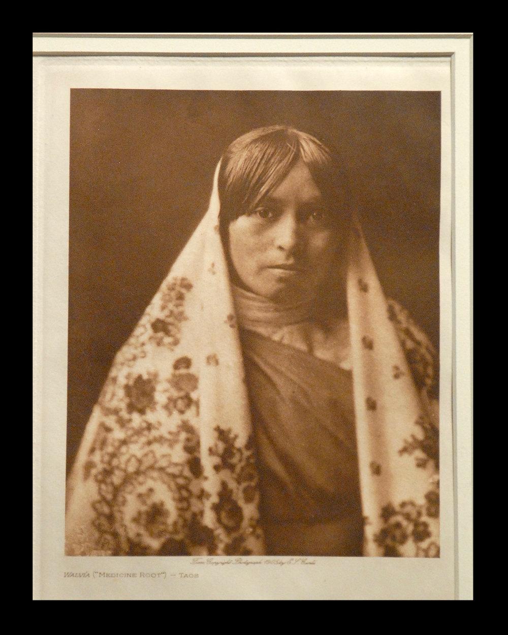 """Walvia (""Medicine Root"") - Taos 1905 Vol.17 Vellum Print,Vintage Photogravure"