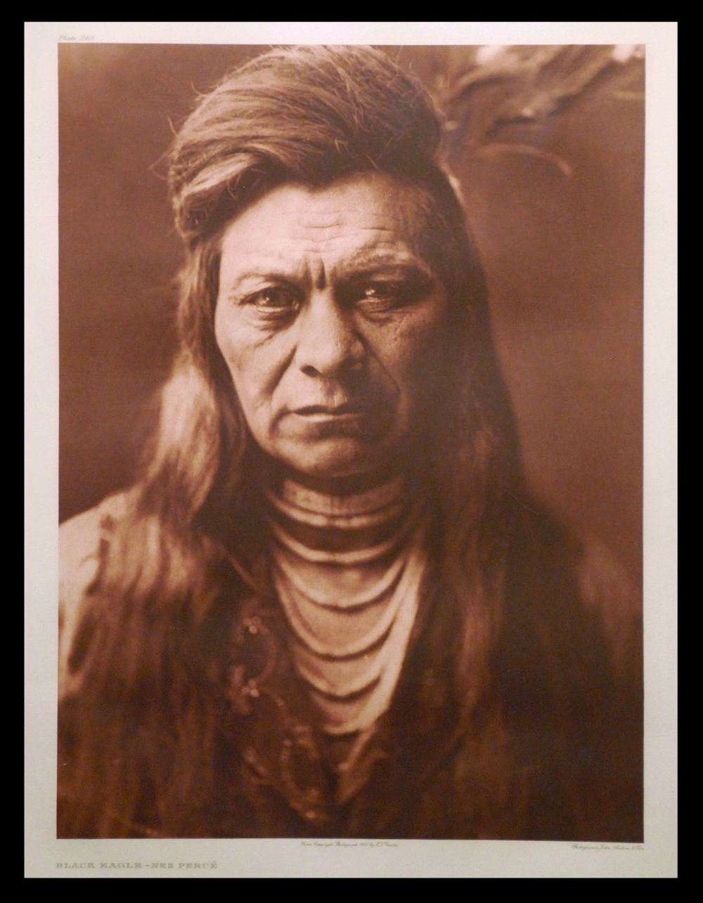 Black Eagle - Nez Perce with black.jpg