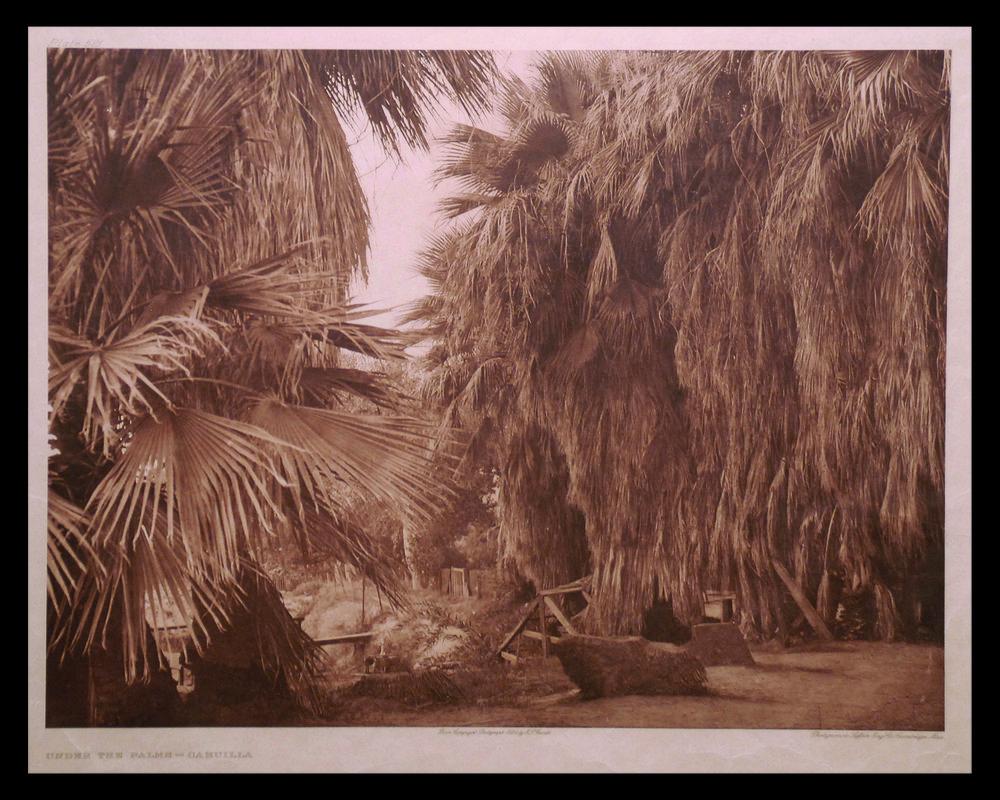 Under The Palms-Gahuilla with black.jpg