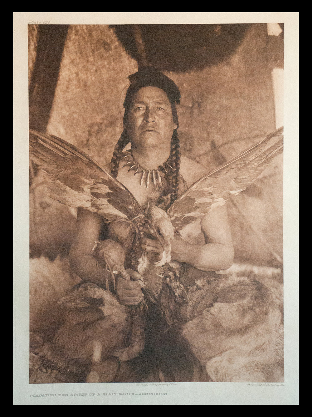 "Plate #634 ""Plagating the Spirit of a Slain Eagle - Assiniboin"" 1926 Portfolio 18"