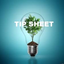 tree in bulb.jpg