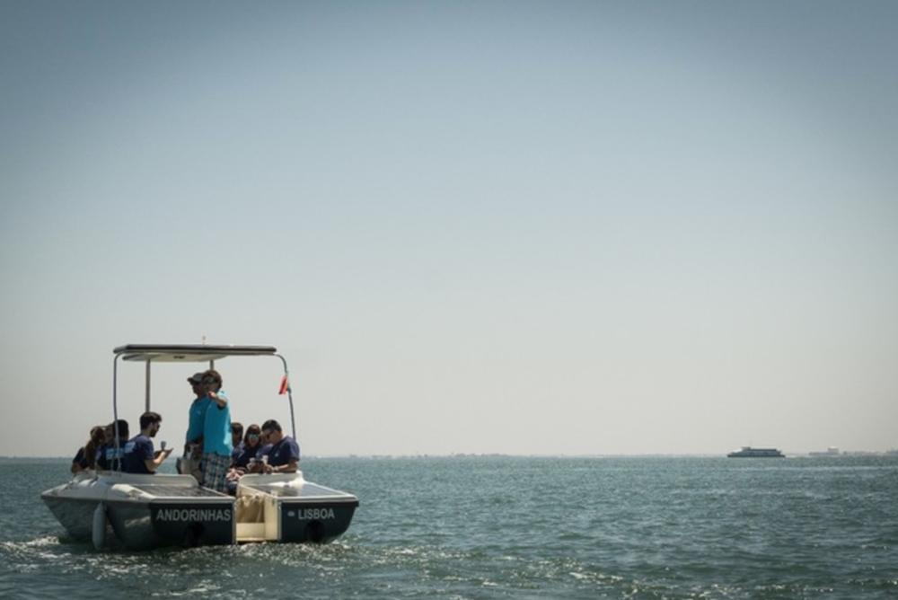 Andorinhas - Solar Boat Tour in Lisbon