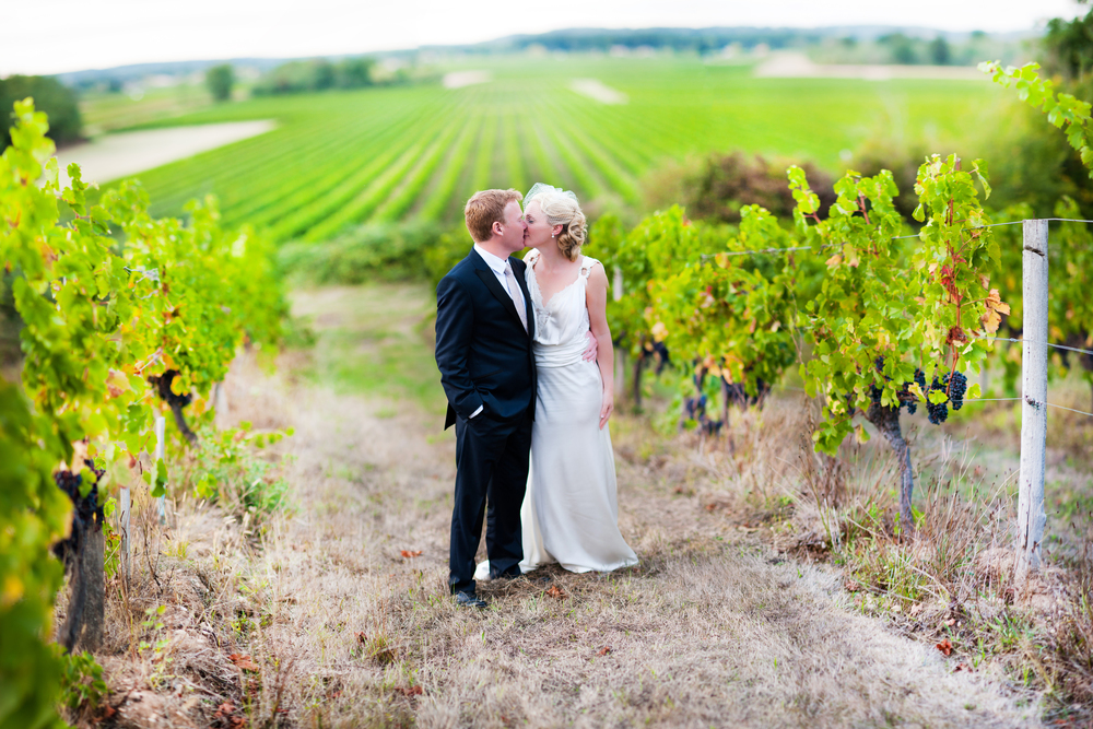 vineyard2.jpg