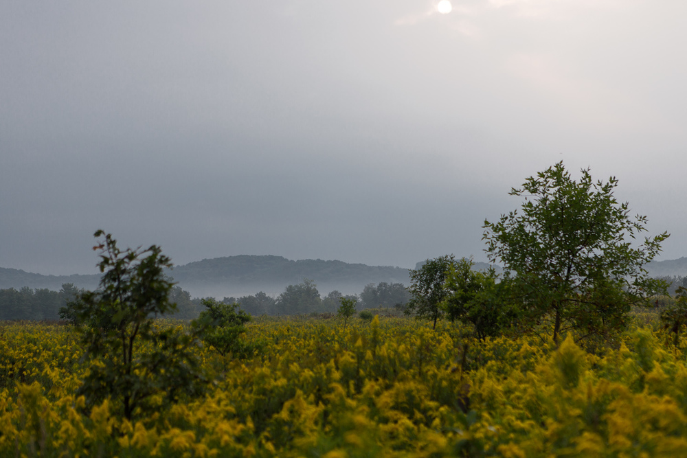 2013_09_08_Emlenton_Fog_2_Web.jpg