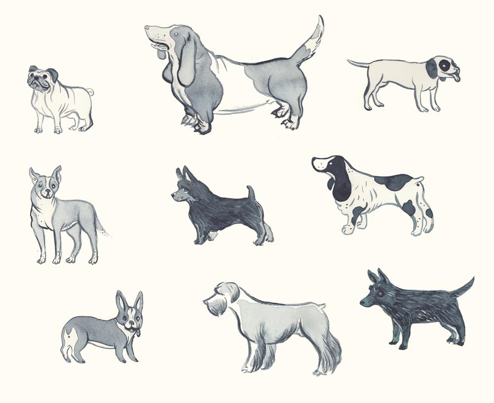 Good Dogs.jpg