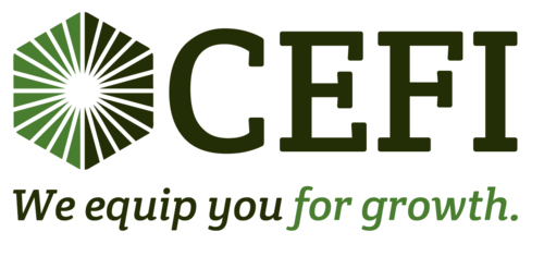 CEFI - Commercial Equipment Financial