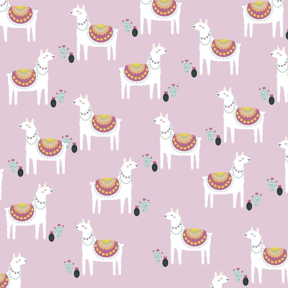 Lady_Llama_Coordinate.jpg