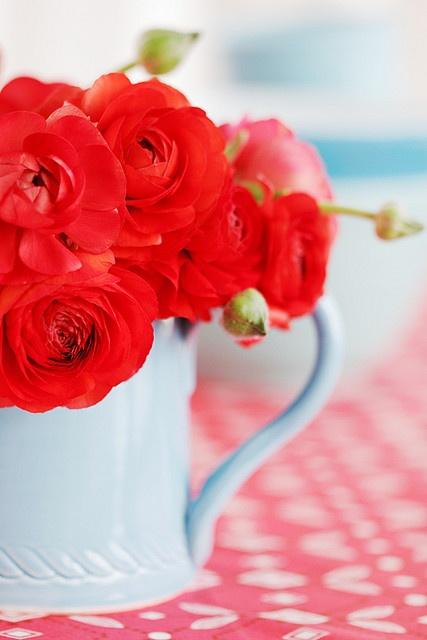 redflower1.jpg