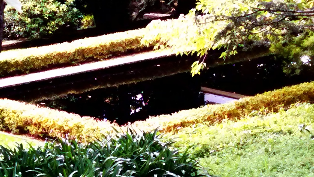 Mirror Pool at the historic Art Deco house in Leura.