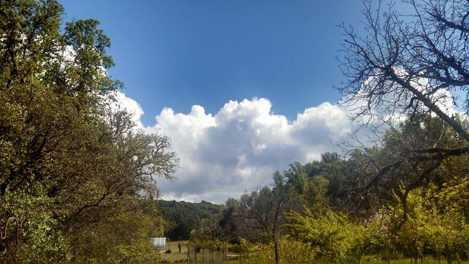 Beautiful clouds and fresh Lake County air. April 2015.