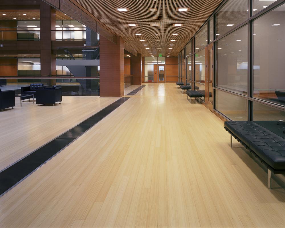 bamboo_flooring_vgn.jpg