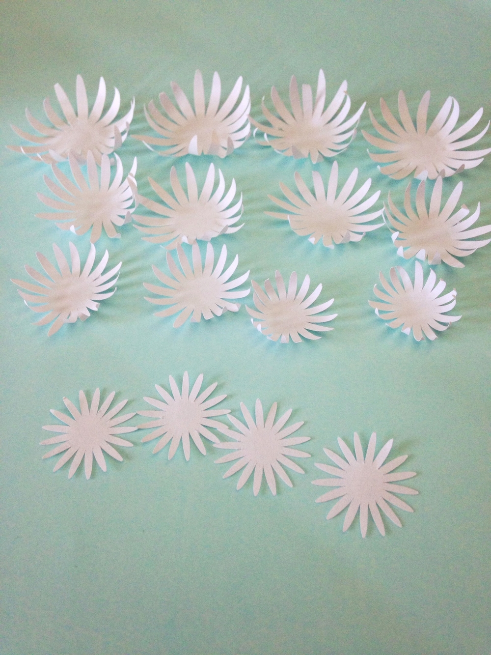 Paper Water Lilies Chrysanthemums Tutorial Only Just Becoming