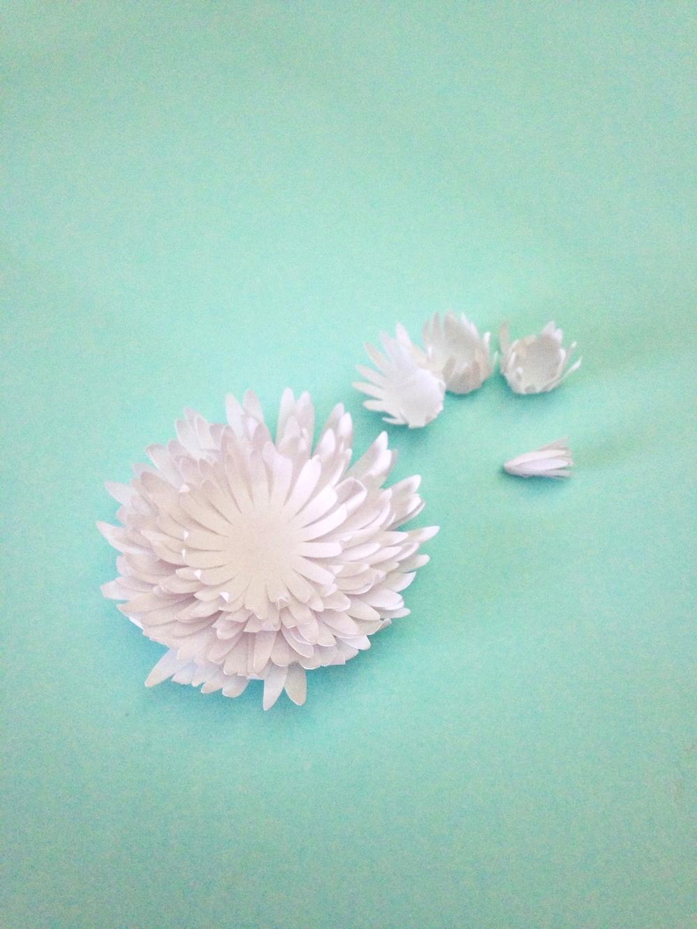Как сделать цветок из бумаги хризантему