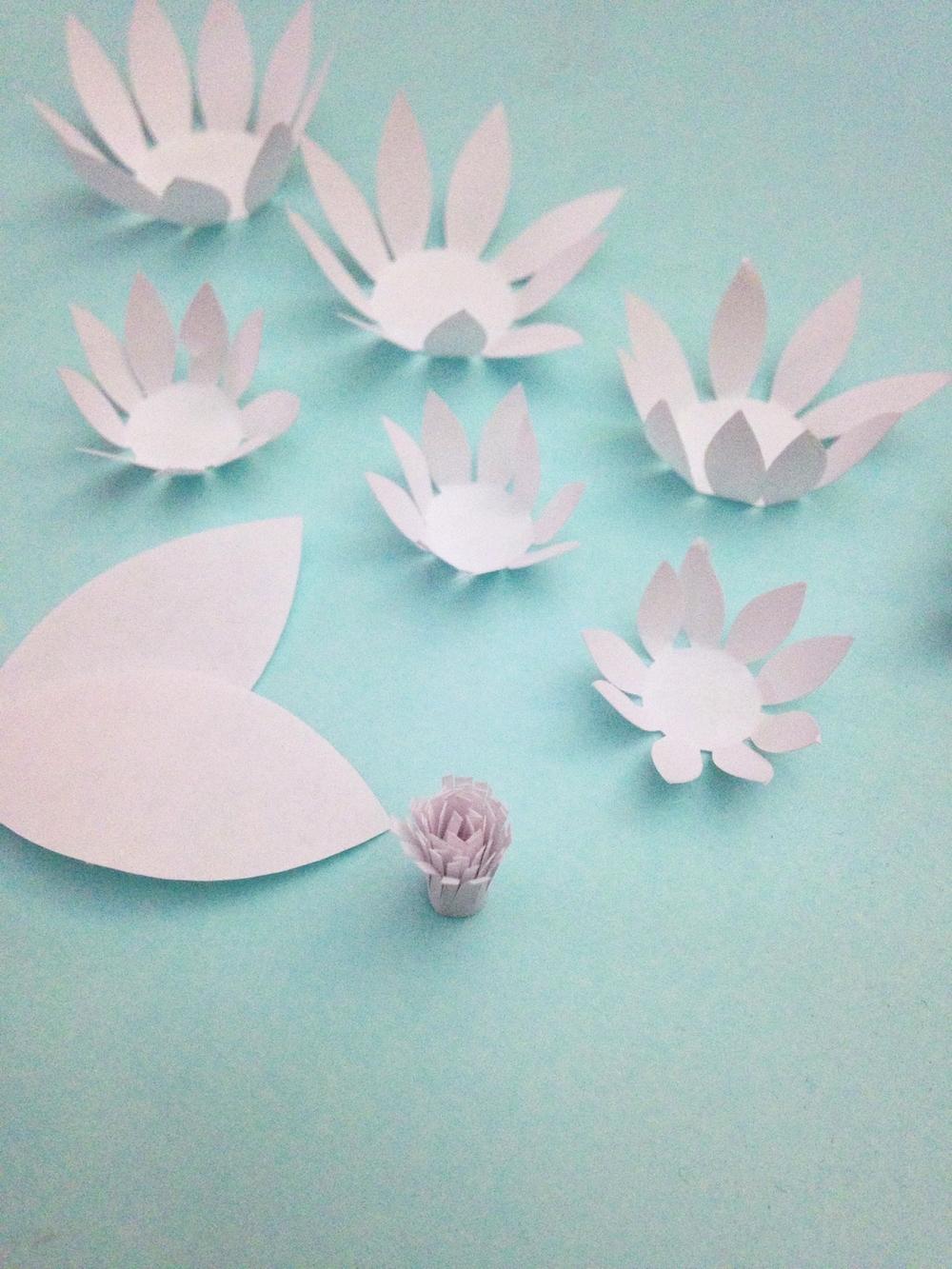 paper water lilies  u0026 chrysanthemums tutorial  u2014 only just becoming