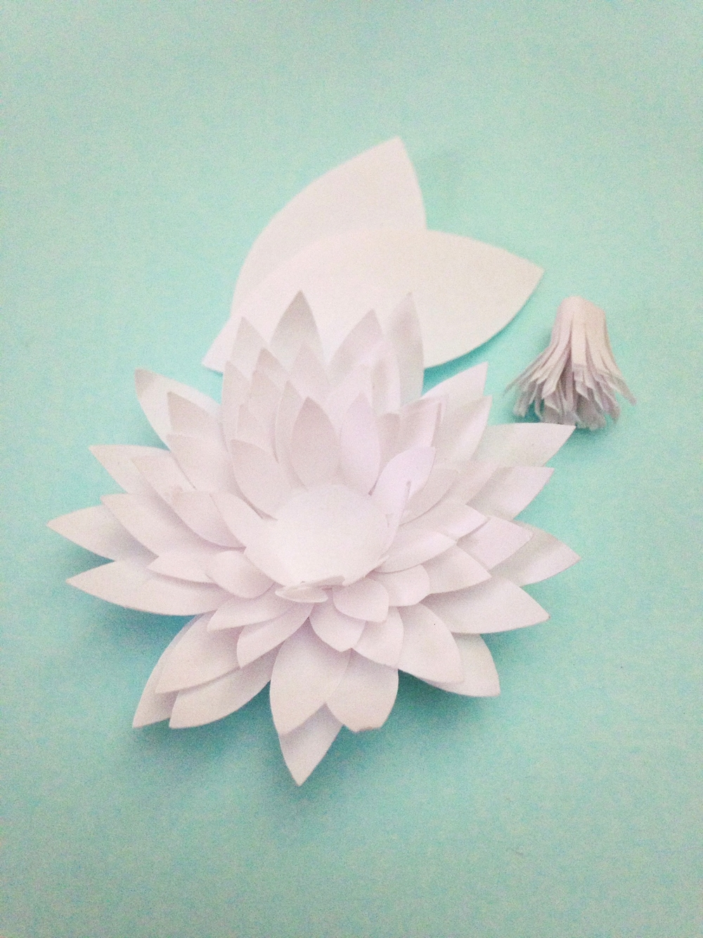 Paper water lilies chrysanthemums tutorial only just becoming img0559g mightylinksfo