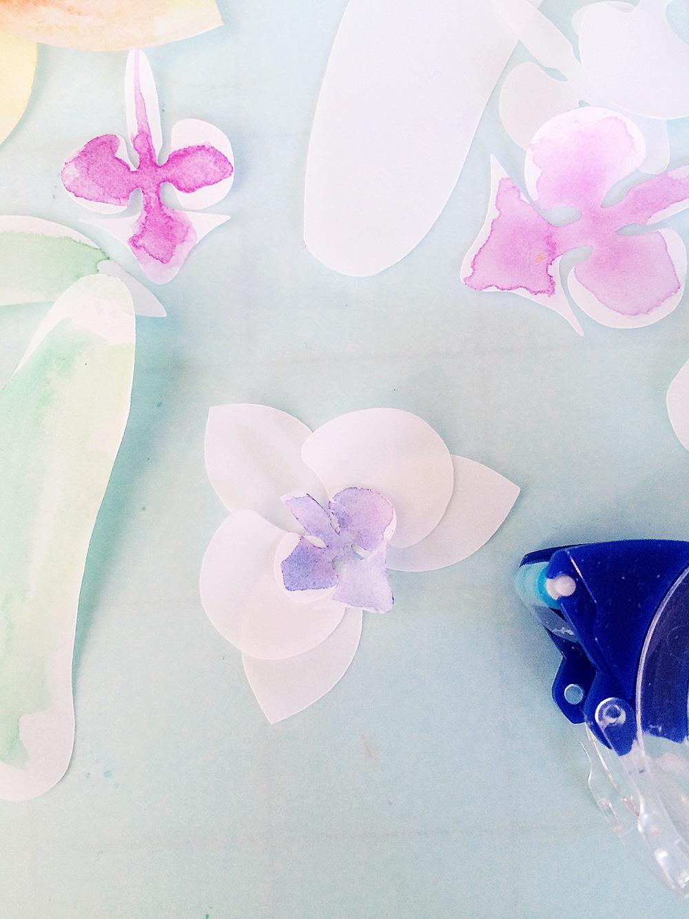 Vellum Orchids 5.JPG