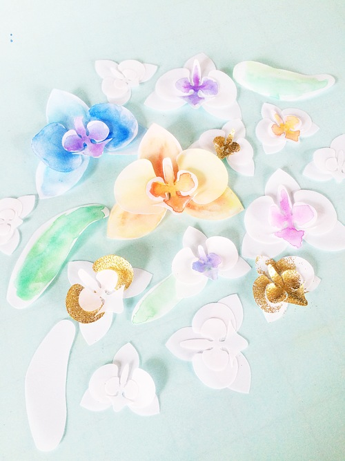 Paper flowers only just becoming vellum orchids mightylinksfo
