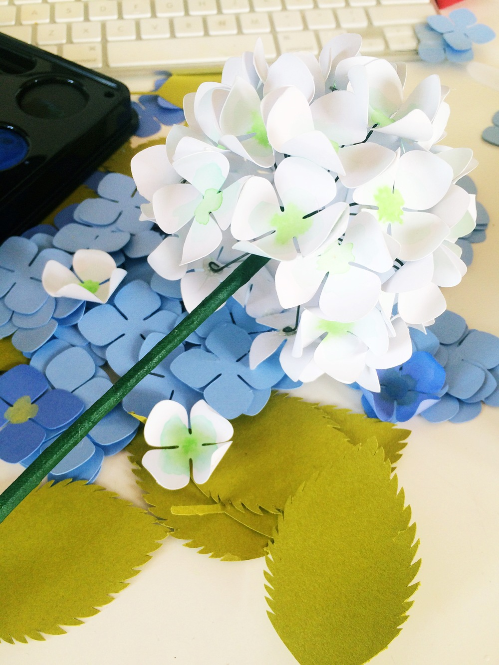 Paper hydrangeas tutorial only just becoming ojbpaperhydrangea11g mightylinksfo