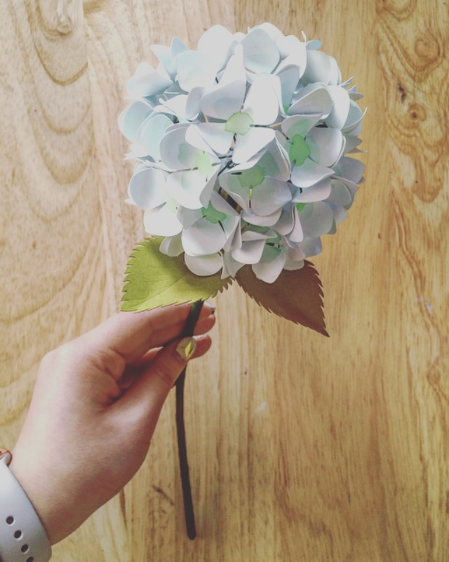 Paper hydrangeas tutorial only just becoming ojbpaperhydrangeawhiteg mightylinksfo