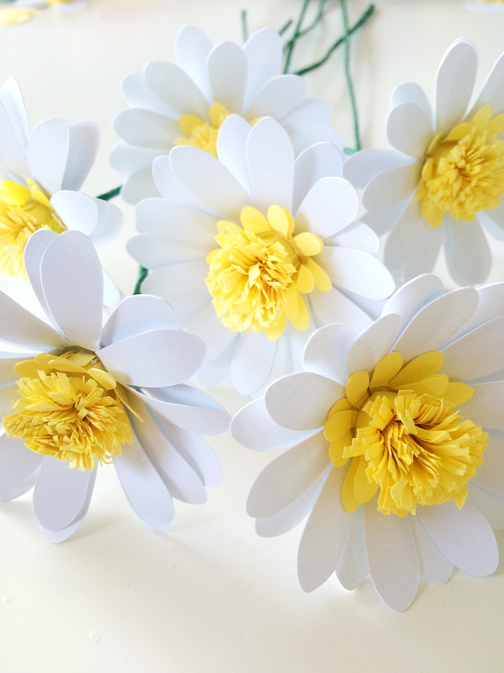 Paper Daisies Tutorial Only Just Becoming