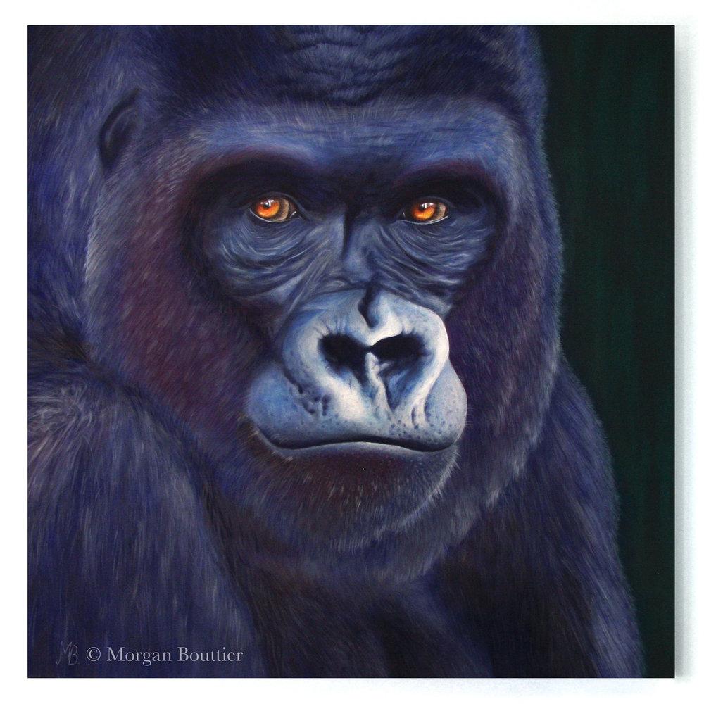 gorille-peinture copie.jpg