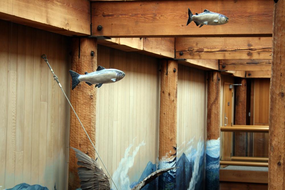 kwisitis salmon 1-adj-sm.jpg