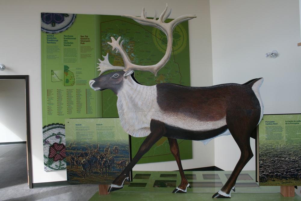 vadzaih exhibit 6.JPG