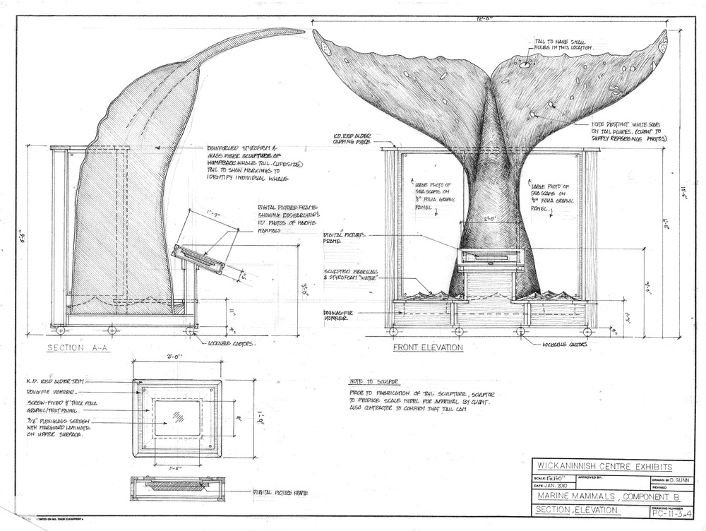 kwisitis marine mammal 2-page-0 (3).jpg