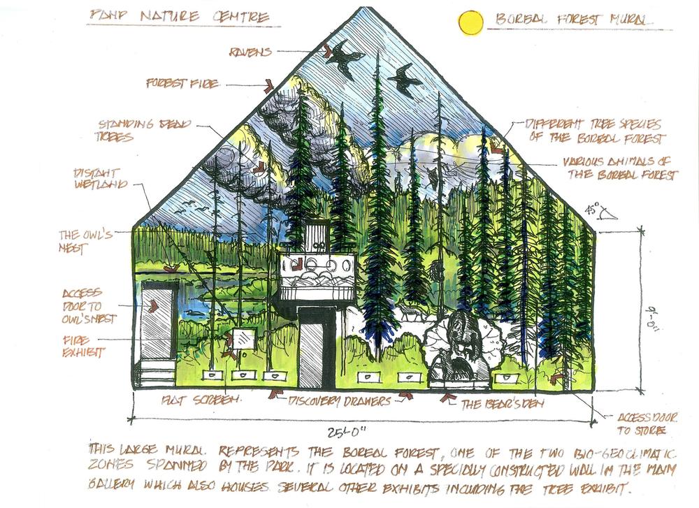 panp boreal forest mural316-web.jpg