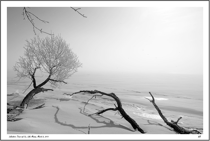 Lakeshore Trees and Ice, Lake Monona , by Warren Buckles. All rights reserved.  sixscrews.com
