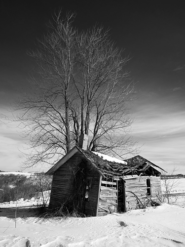 Milk House Monroe County Wisconsin, by Warren Buckles. All rights reserved.