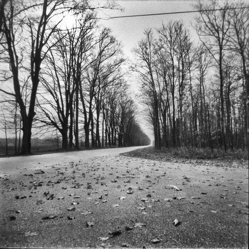 Sister Bay    Holga pinhole.  Bob Beaverson, all rights reserved.