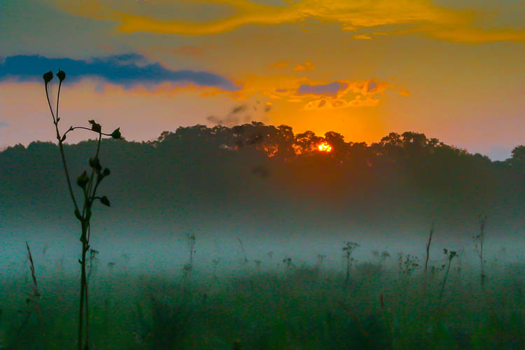 Sunrise Over Greene Prairie, by Don Julie. All rights reserved.