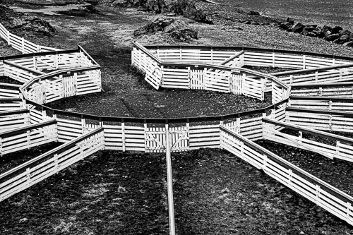 Sheep Pens at Hamansratt, Iceland, by David Schoengold. A