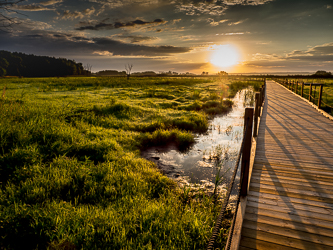 Sunrise at Horicon Marsh, by Don Julie. All rights reserved.