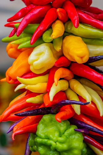 Peppers by Paul McMahon. All rights reserved.
