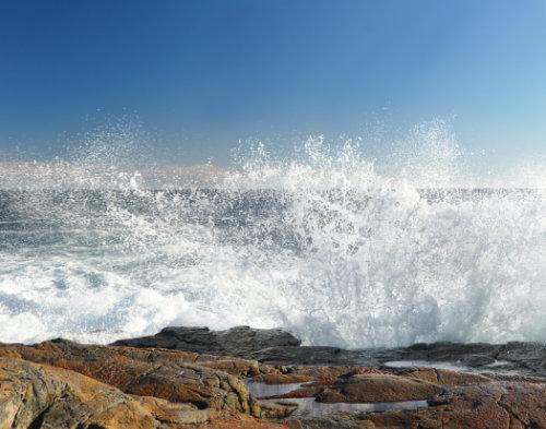 Wave by David Steinkraus. All rights reserved.