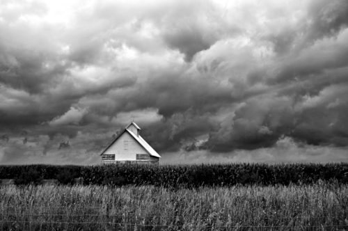 White Shed by Diane Berry. All rights reserved.