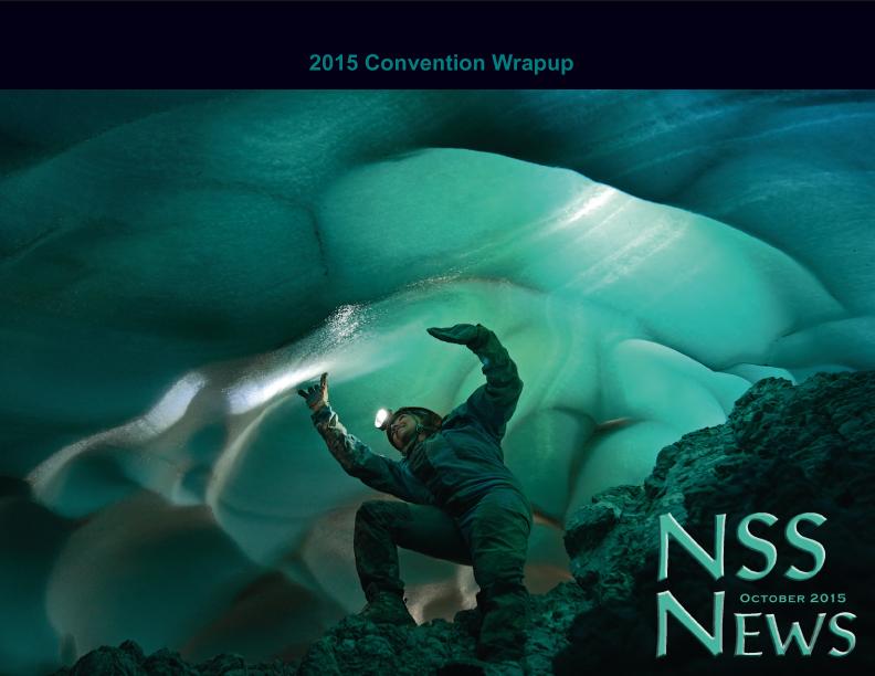 October 2015 NSS NEWS SR_v2-1.jpg