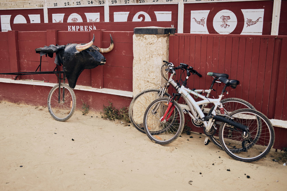 Novilleros   Trainiert wird mitunter mehrmals in der Woche. Das große Ziel vieler  Novilleros  ist es, den eigenen Lebensunterhalt als  Matador  zu verdienen.