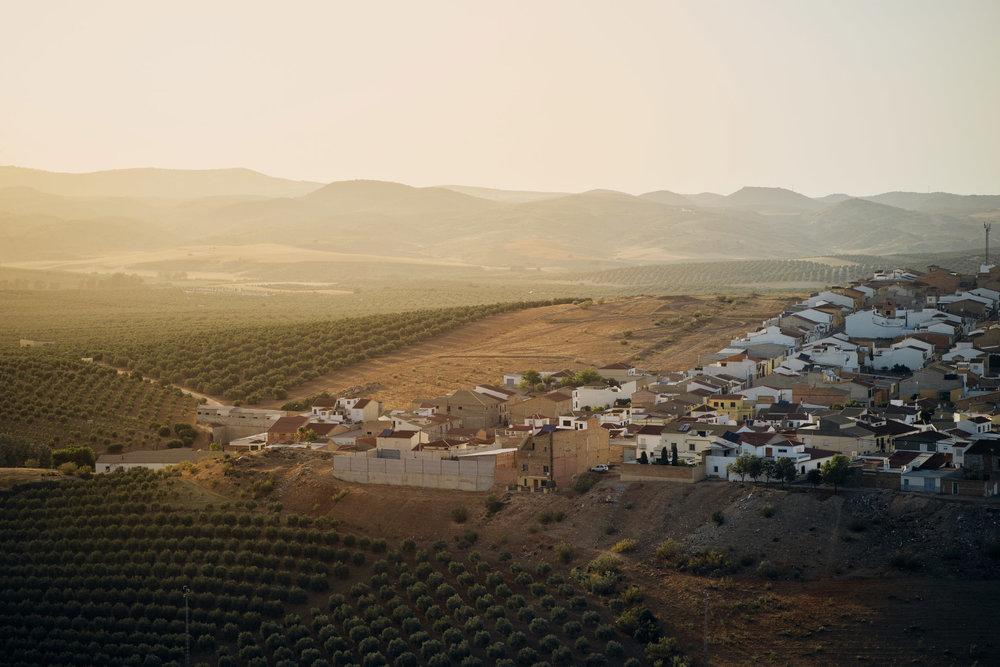 Novilleros    Martín de la Jara , ein kleines Dorf im Süden Spaniens und die Heimat des Jungstierkämpfers Pedro José Aguilar. So wie er kommen viele angehende Stierkämpfer eher aus den ländlichen Gegenden des Landes.