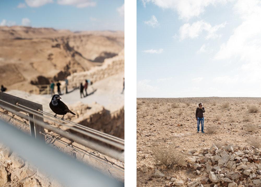 israel jack sorokin middle east photography fine art travel jewish judaism rocks desert bird masada man smoking negev
