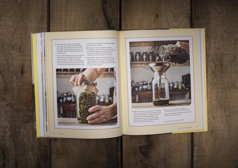 Jack Sorokin The Herbal Handbook for Homesteaders Quarto Publishing Abby Artemisia Commercial Photographer Asheville North Carolina Marshall Photographer