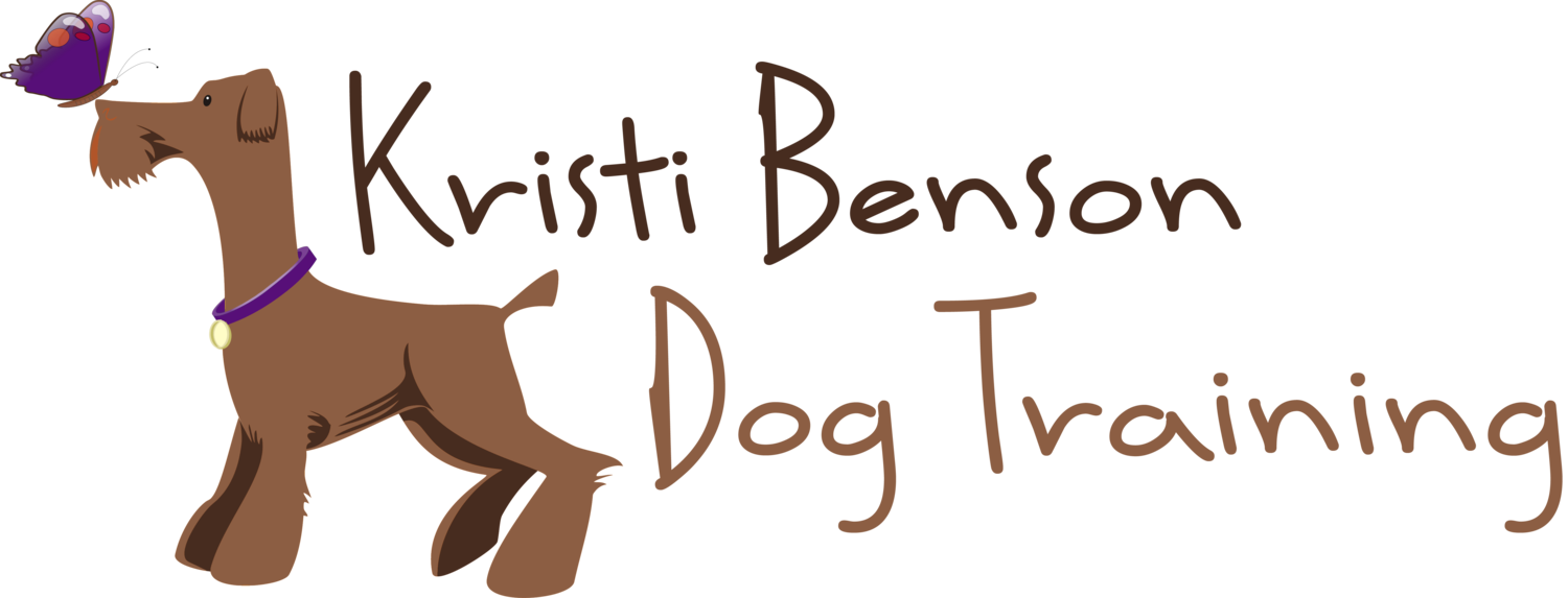 Dog Training with Kristi Benson