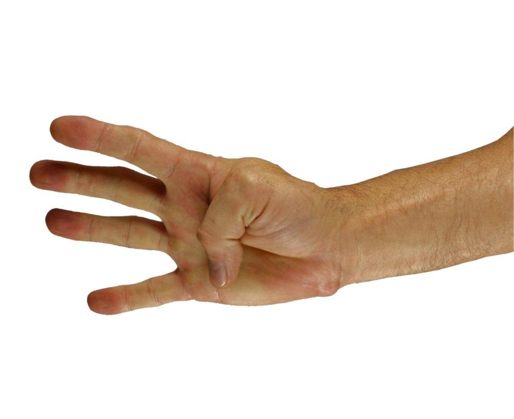step one hand target hand.jpg