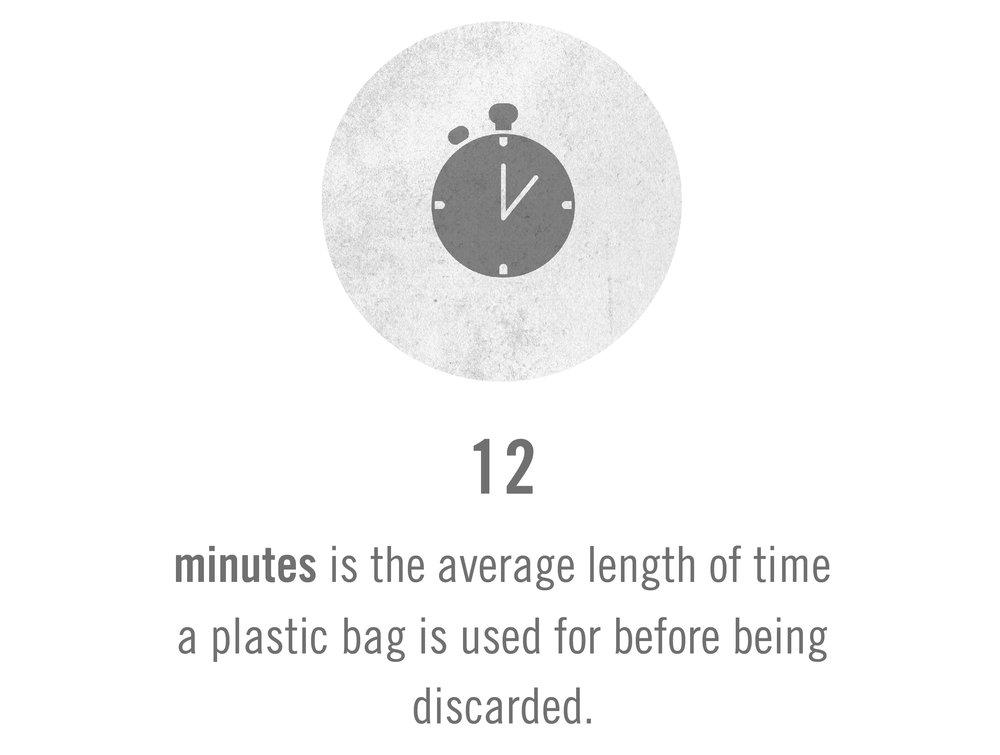 fact2.jpg