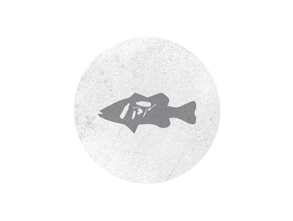 microplastic-icons-fish.jpg