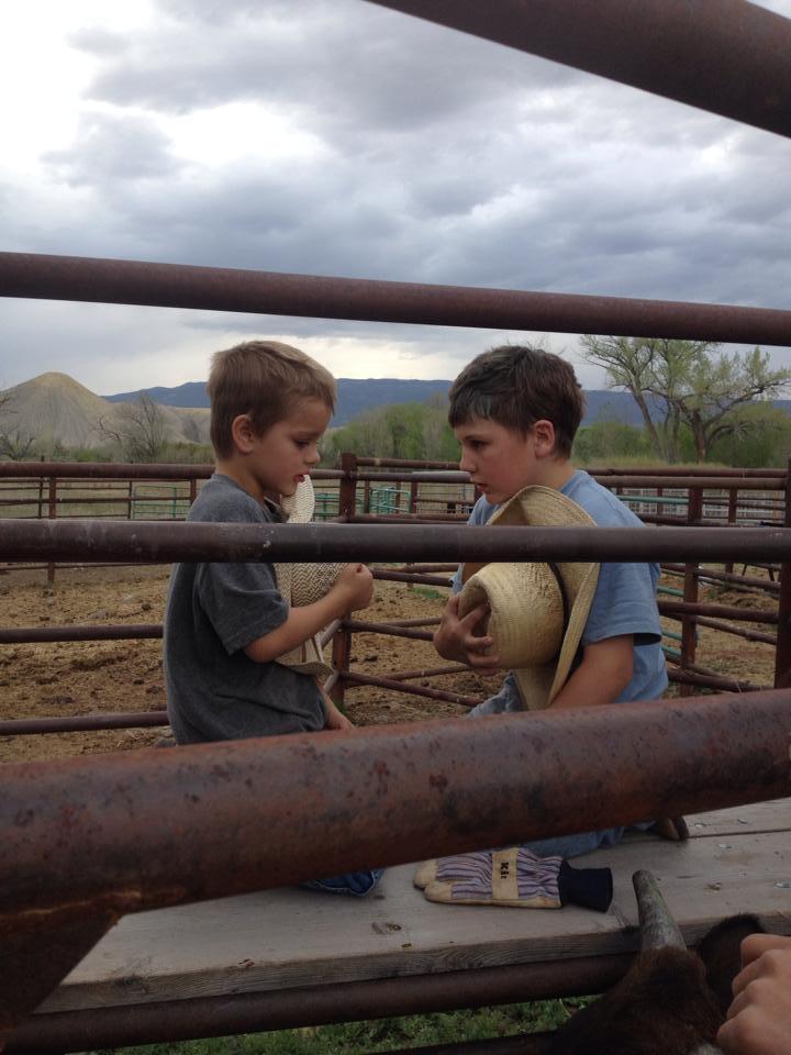 cowpokes.jpg